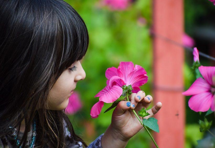 Let your garden grow!