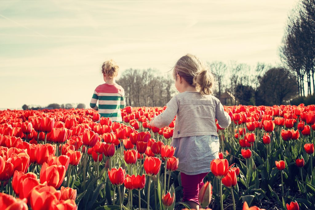 Girls running through tulip field in spring time.