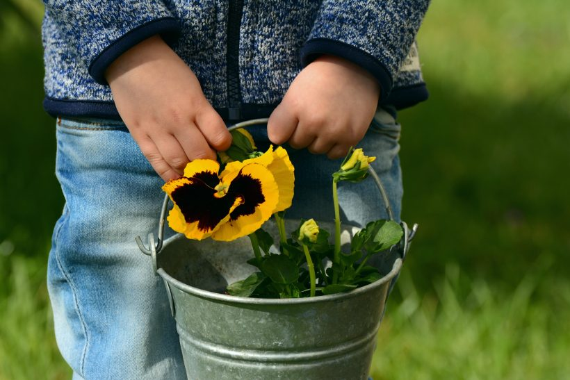 Harvest Playful Learning this Spring!